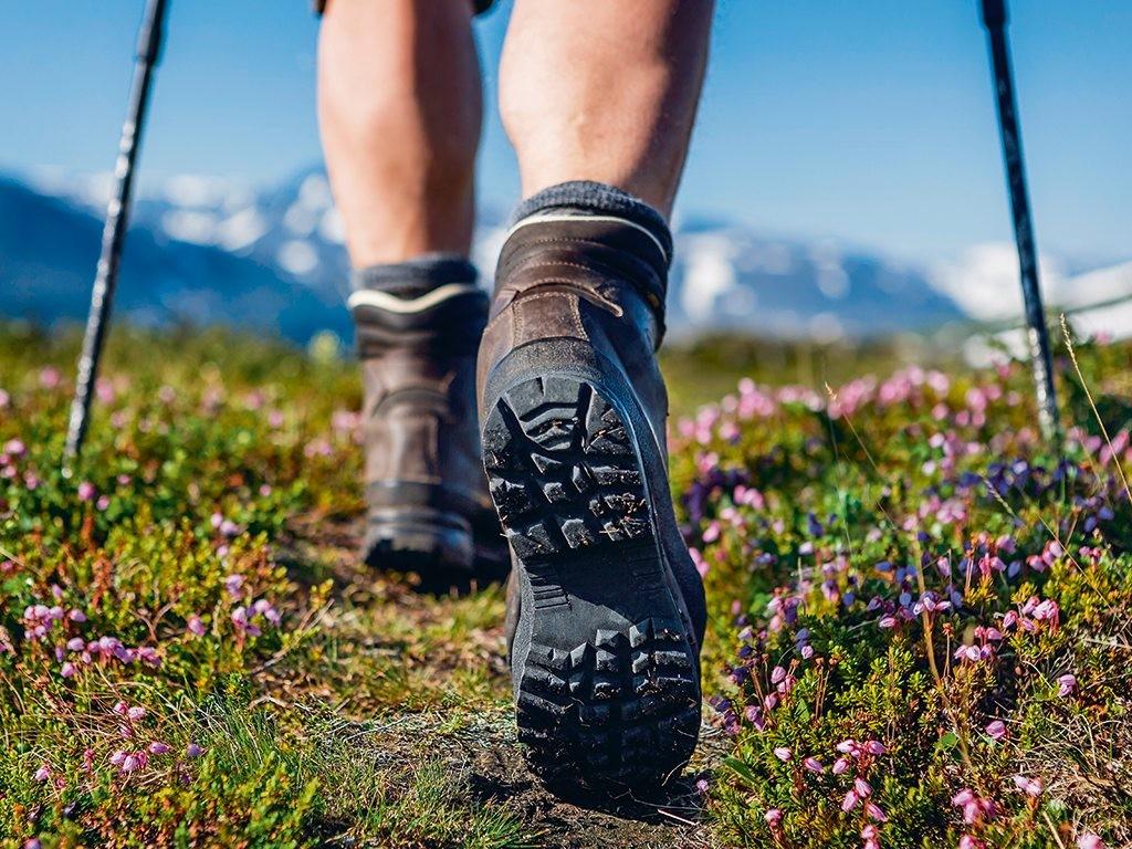 Những điều thú vị khi trekking