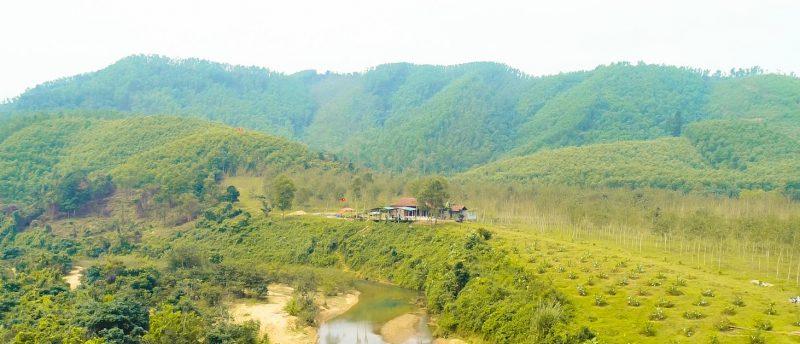 Wild Boar Eco Farm Quảng Bình